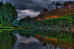Eksploruj – dżungla Amazonii bez wychodzenia z domu !!!