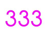 333 love max
